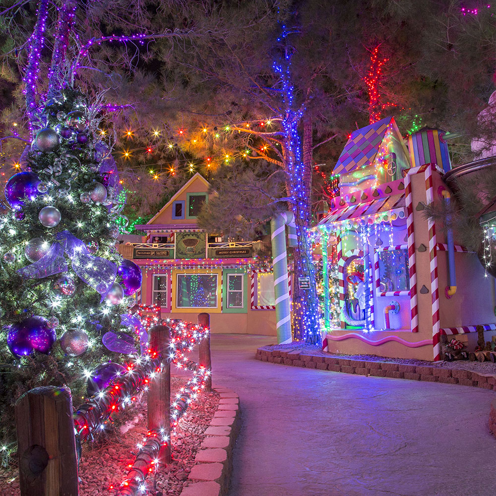 Las Vegas Favorite Charity Opportunity Village Magical Forest